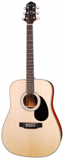 HD-100S/NT WESTERN GUITAR CRAFTER